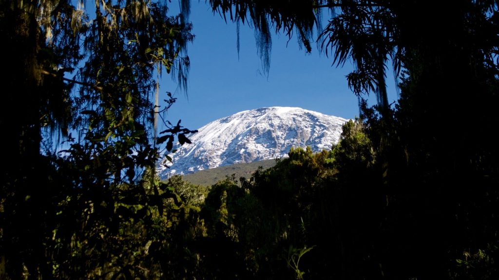 Snow-covered peak of Mount Kilimanjaro